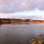 2015. gada janvāris. Abava plūdu laikā. Foto: Jānis Kamerāds.
