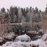 Teteriņa ezers. Foto: Jānis Kamerāds.