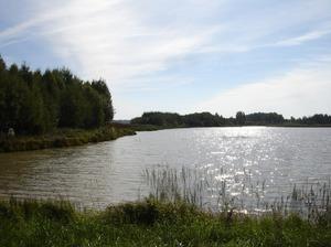 Kazukalnu dīķi