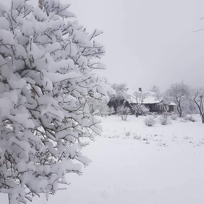 ziemas_ainava.jpg