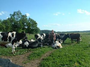 Zemnieku saimniecība GRĪVAS